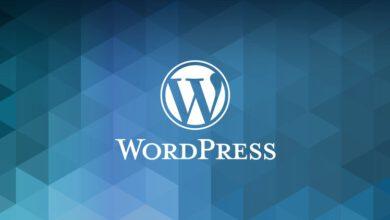 Kullanmakta Olduğunuz WordPress Sürümünü Öğrenme